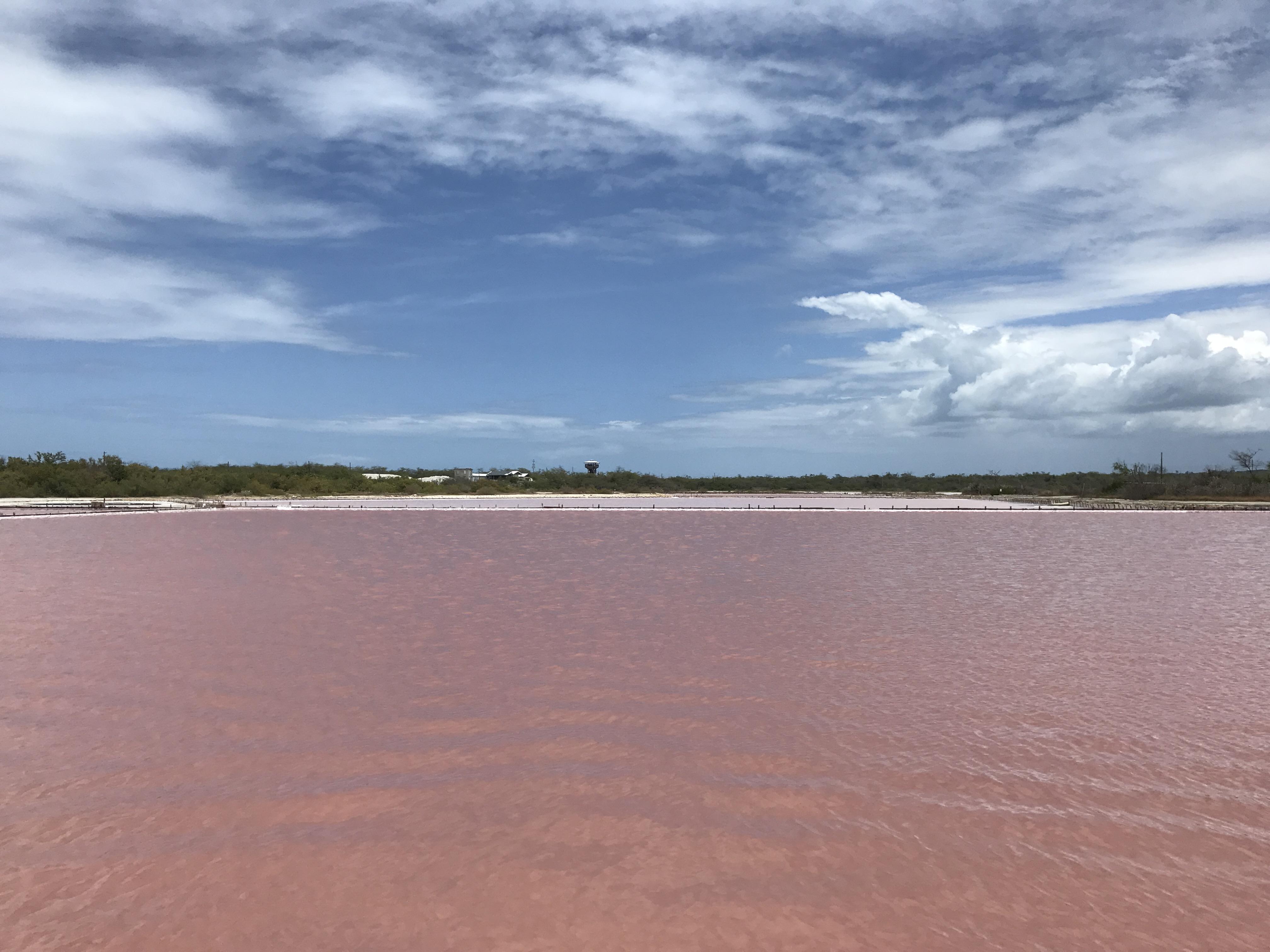 Cabo Rojo - Pink Salt Flats